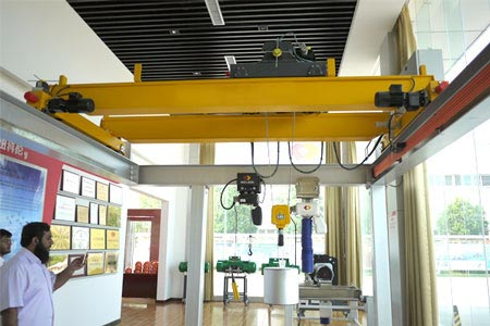 Anti-Swing Bridge Crane